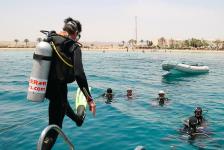 Summerlabb in Egypte – Op bezoek bij de redder van het koraalrif