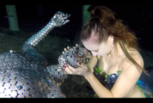 Vissen van TODI krijgen 'gezelschap'