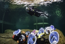 Test: Snorkelmaskers