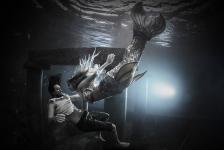 Gered door een zeemeermin – Het verhaal achter de foto