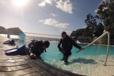 Duikcentrum Arraia Divers op de Azoren te koop