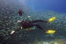 Jack Polanen – Bonaire verveelt nooit!