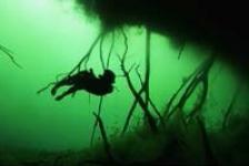 North Sea Film Festival: Freediven in een cenote