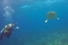Diana van den Heuvel – Mooie duik aan de oostkant van Bonaire