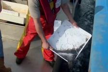 Een miljoen nieuwe bewoners in het Grevelingenmeer (video)