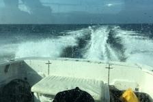 Lars Dekker – Een Noordzeeduik na het werk