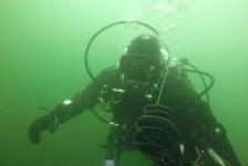 Vincent Dorresteijn – Op het nippertje een haai gemist