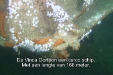 Jackie Oomen – Noordzee Expeditie 2014