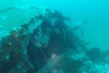 Lars Dekker – Mooie duik op noordzeewrak de Salland