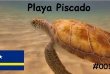 Steven Stegeman- Curaçao 1: Schildpadden en zeepaardjes