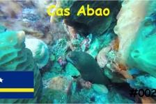 Steven Stegeman- Curaçao 2: Cas Abao