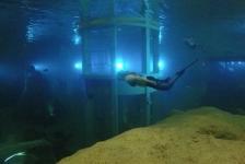 Steve Saenen – Todi indoor duikcentrum