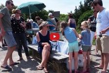 Videoreportage – De Oosterschelde boven water