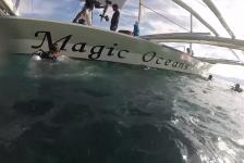 Wendy Versluis – Magic Oceans Deel 1