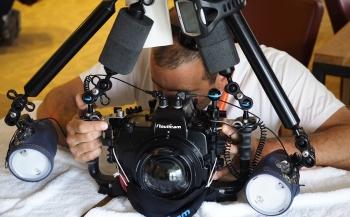 Reglementen ZK en ONK Onderwaterfotografie staan online