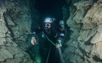 Brenda de Vries - Molnar Janos-grot