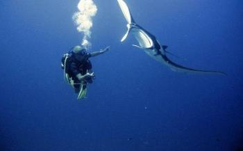 Malediven in 30 seconden met... Marc Kouwenberg
