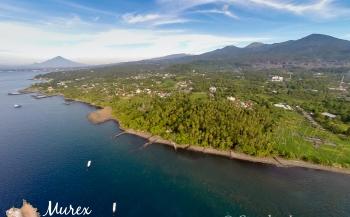 Duiken in Manado Bay