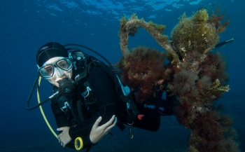 Reportagewedstrijd 2016 - Het Bonaire-gevoel op de Canarische Eilanden