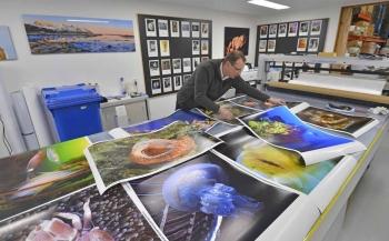 Nu extra prijzen in Dynamische foto-expo op Duikvaker