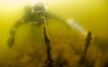 Axel Gunderson - Onderzoek in een visvijver