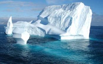 Shell maakt plaats voor natuurreservaat