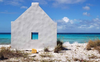 Must-haves - de Duikgidsen Bonaire, Curaçao en Zeeland