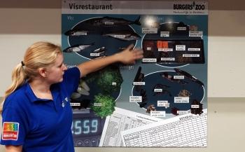 Dirk Van den Bergh - Ocean Burgers' Zoo achter de schermen