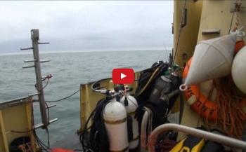 Marc Collet - Een gezellig duikje in het Veenmeer