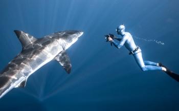 Maandthema Onderwater, het online magazine van Kamera Express vol foto- en video-inspiratie