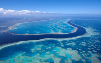 Is het Great Barrier Reef nog te redden?
