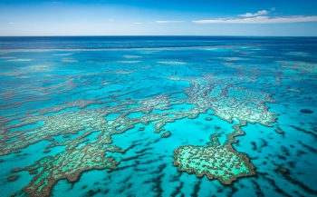 Great Barrier Reef - Percentage koraalbedekking nadert dieptepunt
