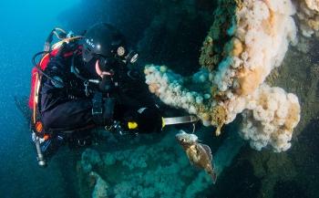 Expeditie Duik de Noordzee schoon - het verhaal achter de foto