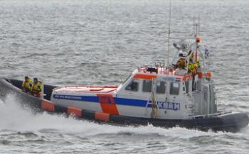Bruinvissen gered bij Katwijk