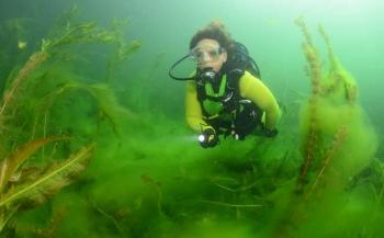 OBK Onderwaterfotografie en -videografie - wedstrijdperiode 2