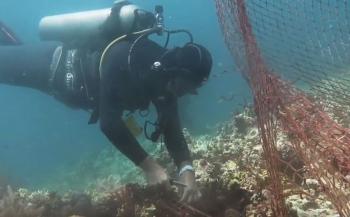 Ocean Gardeners ruimen spooknet op