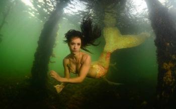 ONK Onderwaterfotografie 2018 - Masters - Groothoek met model