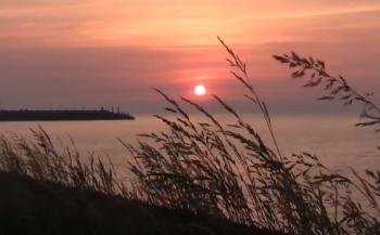 ONK Onderwatervideo 2018 - Leven in de duisternis van Jo De Smedt