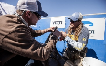 Onderzoek naar witte haaien - test met nieuwe ruimtevaarttechnologie
