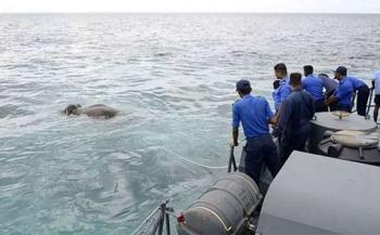 Marineduikers redden olifant uit zee