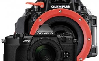 Zomeractie met Olympus OM-D E-M5II onderwatercamera