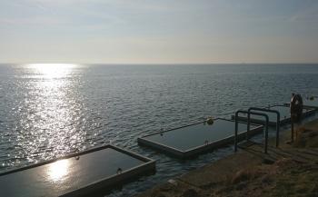 Unieke proeftuin onder water in Oosterschelde