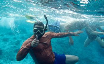 Bonaire, het voorbeeld van haaienbescherming