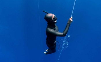 Thematafel: Let's go freediving!