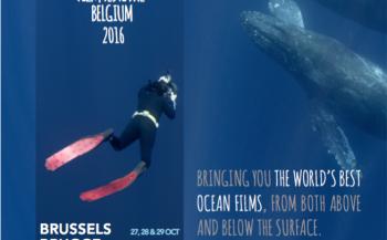 Ocean Film Festival - Leuven
