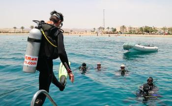 Summerlabb in Egypte - Op bezoek bij de redder van het koraalrif