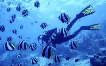 Testimonial: Waarom de Suunto EON Core een geweldige duikcomputer is