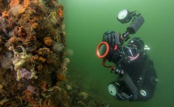 Tweede testdag WK Onderwaterfotografie op 11 oktober