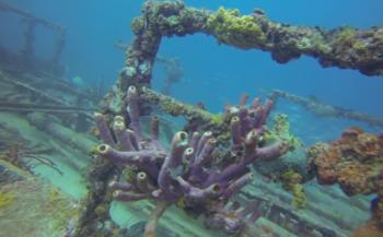 Leendert Oosse- Aruba's Debbie II wrak