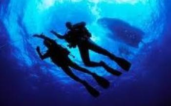 Op de rol: de duikverzekering